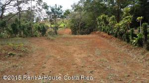 Terreno En Ventaen San Ramon, San Ramon, Costa Rica, CR RAH: 17-998
