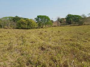 Terreno En Ventaen Puntarenas, Esparza, Costa Rica, CR RAH: 18-8
