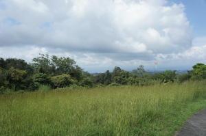 Terreno En Venta En Mora En Ciudad Colon - Código: 19-101