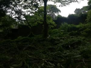 Terreno En Venta En Escazu En Escazu - Código: 19-158