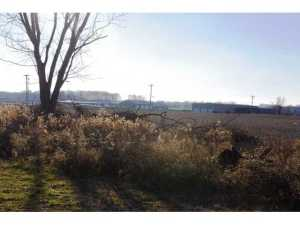 Land for Sale at 8565 Diley 8565 Diley Canal Winchester, Ohio 43110 United States