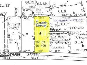 土地,用地 为 销售 在 117 Richelderfer 117 Richelderfer Cardington, 俄亥俄州 43315 美国