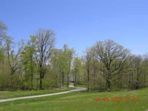 土地 为 销售 在 County Road 158 East Liberty, 俄亥俄州 43319 美国