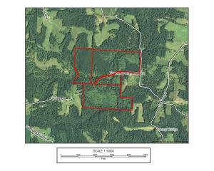 Land for Sale at Graham Cutler, Ohio 45724 United States