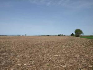 Land for Sale at Kingston Kingston Circleville, Ohio 43113 United States