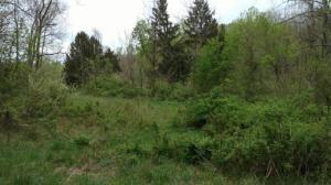 Property for sale at 0 Orchard NW Drive, Lancaster,  OH 43130