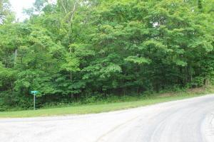 Land for Sale at 409 WINTUN 409 WINTUN Hide Away Hills, Ohio 43107 United States