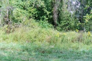 Land for Sale at TOWNSHIP ROAD 63 Glenford, Ohio 43739 United States