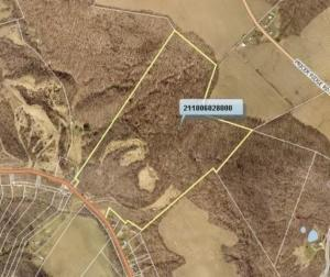 Land for Sale at 8998 State Route 41 Bainbridge, Ohio 45612 United States