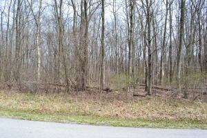 Land for Sale at 201 Stonesthrow Alexandria, Ohio 43001 United States