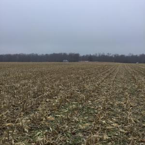 土地 为 销售 在 SADIE THOMAS Johnstown, 俄亥俄州 43031 美国