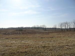 Land for Sale at County Road 121 County Road 121 Mount Gilead, Ohio 43338 United States