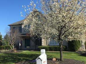 6459 Grasslands Court, Westerville, OH 43082