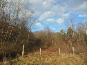 Terreno por un Venta en APPLESEED ROAD Bellville, Ohio 44813 Estados Unidos