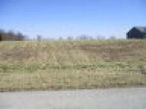 Land for Sale at Lot#17 Climer Lane Frankfort, Ohio 45628 United States