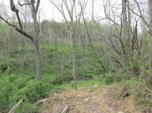 Land for Sale at Ermine Ermine Jackson, Ohio 45640 United States