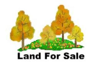 土地 为 销售 在 Rubins Kenton, 俄亥俄州 43326 美国