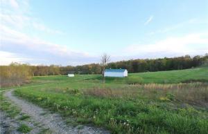 Terreno por un Venta en 8280 Adamsville Otsego Adamsville, Ohio 43802 Estados Unidos