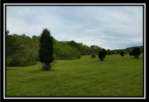 土地 为 销售 在 37351 Bashan Long Bottom, 俄亥俄州 45743 美国