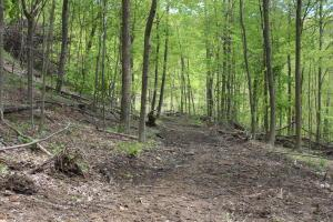 Land for Sale at Tunnel Hill Road Tunnel Hill Road Freeport, Ohio 43973 United States