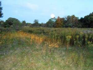 Property for sale at 0 Todd Street Road Tract A, Sunbury,  OH 43074