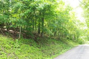 Land for Sale at 1207 Taos Hide Away Hills, Ohio 43107 United States