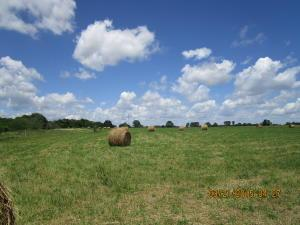 Land for Sale at E. US Rt. 50 East Bainbridge, Ohio 45612 United States