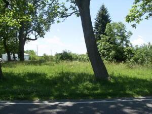 土地 为 销售 在 11123 Rosedale Mechanicsburg, 俄亥俄州 43044 美国