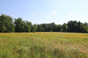 Property for sale at 0000 Patrick Road, Sunbury,  OH 43074