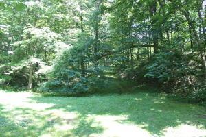 Land for Sale at 38300 Jockey Hollow Freeport, Ohio 43973 United States