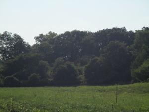 Land for Sale at Lot 6 Little Creek Road Lot 6 Little Creek Road Frankfort, Ohio 45628 United States