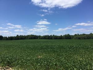 Land for Sale at Sadie Thomas Johnstown, Ohio 43031 United States