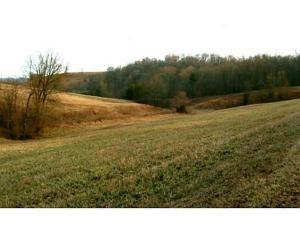 Land for Sale at Spriggs Spriggs Jackson, Ohio 45640 United States
