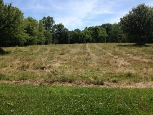 Property for sale at 6756 Linda Lane, Sunbury,  OH 43074
