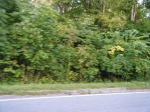 Land for Sale at 279 Waggoner Blacklick, Ohio 43004 United States
