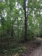 土地,用地 为 销售 在 6300 Via Ken 6300 Via Ken Hopewell, 俄亥俄州 43746 美国