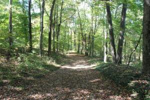 土地 为 销售 在 11756 Mount Hope 11756 Mount Hope Glenford, 俄亥俄州 43739 美国