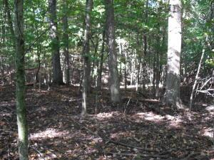 Property for sale at 0 Hogback Road 116.04, Sunbury,  OH 43074