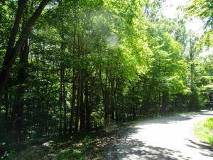 土地,用地 为 销售 在 940-41 Sauk 940-41 Sauk Hide Away Hills, 俄亥俄州 43107 美国