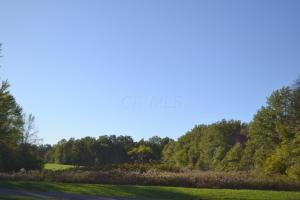 Property for sale at 0 Bunty Station Road, Delaware,  OH 43015