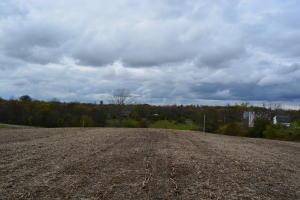 土地 为 销售 在 State Route 296 State Route 296 Cable, 俄亥俄州 43009 美国