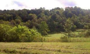 Terreno por un Venta en 36372 Township Rd 50 36372 Township Rd 50 Lewisville, Ohio 43754 Estados Unidos