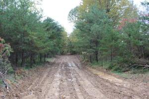 Land for Sale at State Route 668 State Route 668 New Straitsville, Ohio 43766 United States