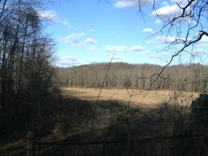 Land for Sale at County Road 11 County Road 11 Junction City, Ohio 43748 United States