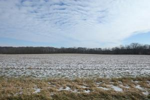 Land for Sale at State Route 746 State Route 746 Cardington, Ohio 43315 United States