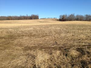 Land for Sale at Danville-Amity Danville-Amity Danville, Ohio 43014 United States