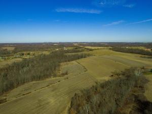 土地,用地 为 销售 在 Pryor Pryor Chandlersville, 俄亥俄州 43727 美国
