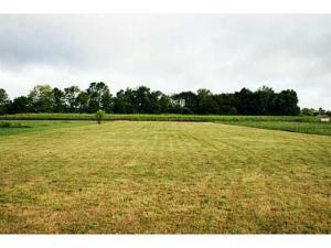 Land for Sale at 11454 State Route 161 11454 State Route 161 Mechanicsburg, Ohio 43044 United States