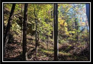 Terreno por un Venta en 1580 Porter Gap 1580 Porter Gap Ironton, Ohio 45638 Estados Unidos