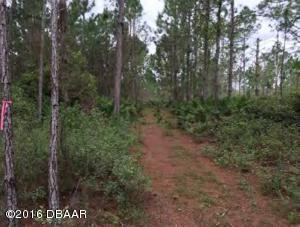 Property for sale at 0 State Rd 40, Ormond Beach,  FL 32174